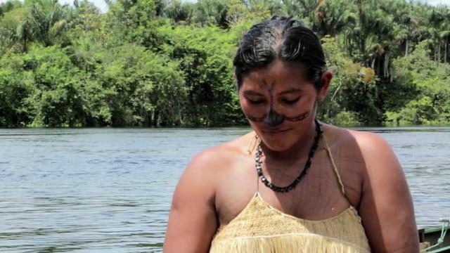 Staudammbau und Mega-Kraftwerk im Amazonas-Regenwald gestoppt