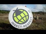 Mein gutes Beispiel 2017 - Preisträger Insect Respect (Reckhaus GmbH & Co. KG)