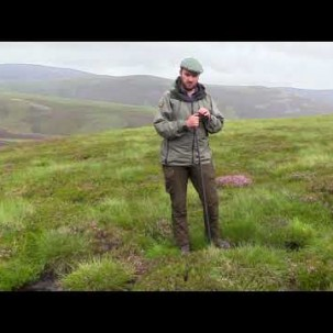 Rewetting Scotland's moors