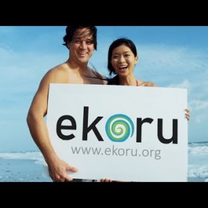 Ekoru the search engine that makes oceans clean and green