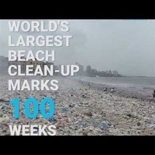 Largest Beach Clean-Up Marks 100 Weeks