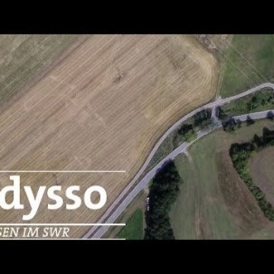 Mit Permakultur gegen das Insektensterben? | SWR odysso