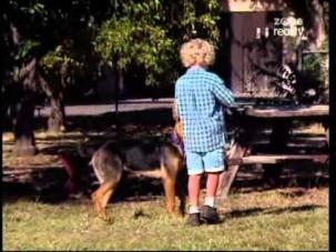 Saki und Danny - Ein Hund spürt, dass er gebraucht wird