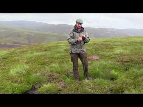Rewetting Scotland's moors