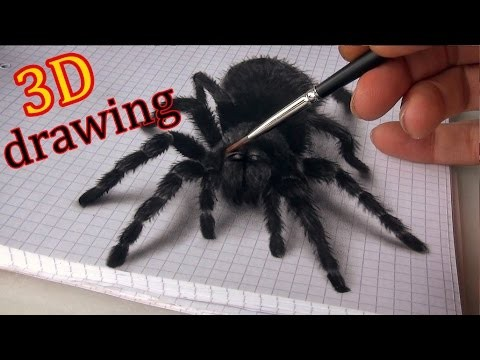 3D Spider Drawing/AMAZING realistic illusion!