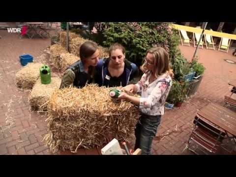 Gärtnern auf Strohballen  - WDR Servicezeit