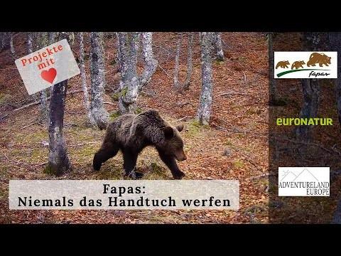 Werden die Bären in Nord-Spanien aussterben? - Niemals das Handtuch werfen (Deutsche Untertitel)
